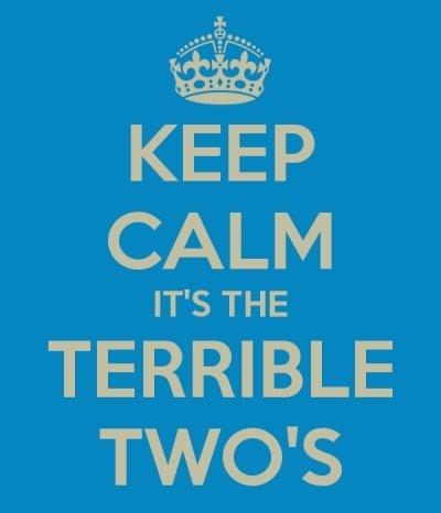 Come sopravvivere ai terrible twos
