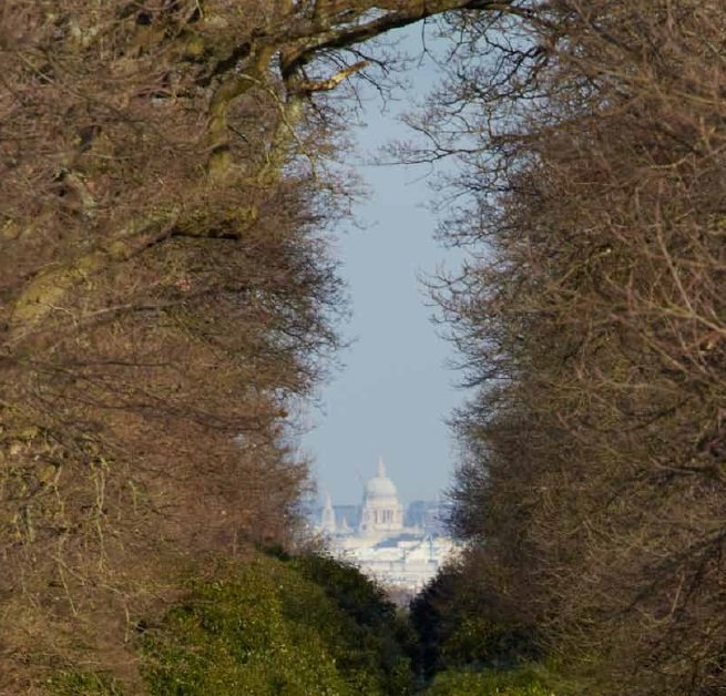 Richmond-park-London