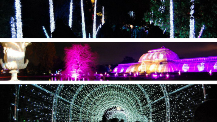 Christmas at Kew Gardens, a magical experience - Mum what else