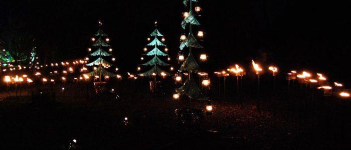 christmas-kew-gardens