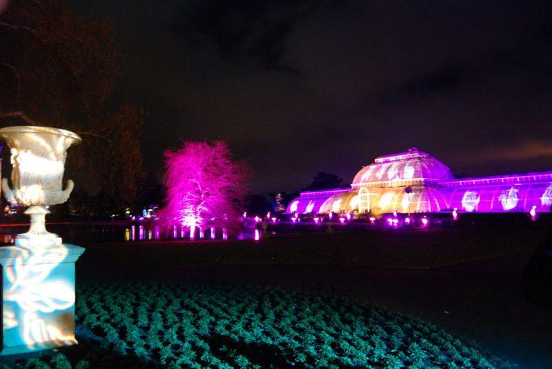 Natale-Kew-Gardens