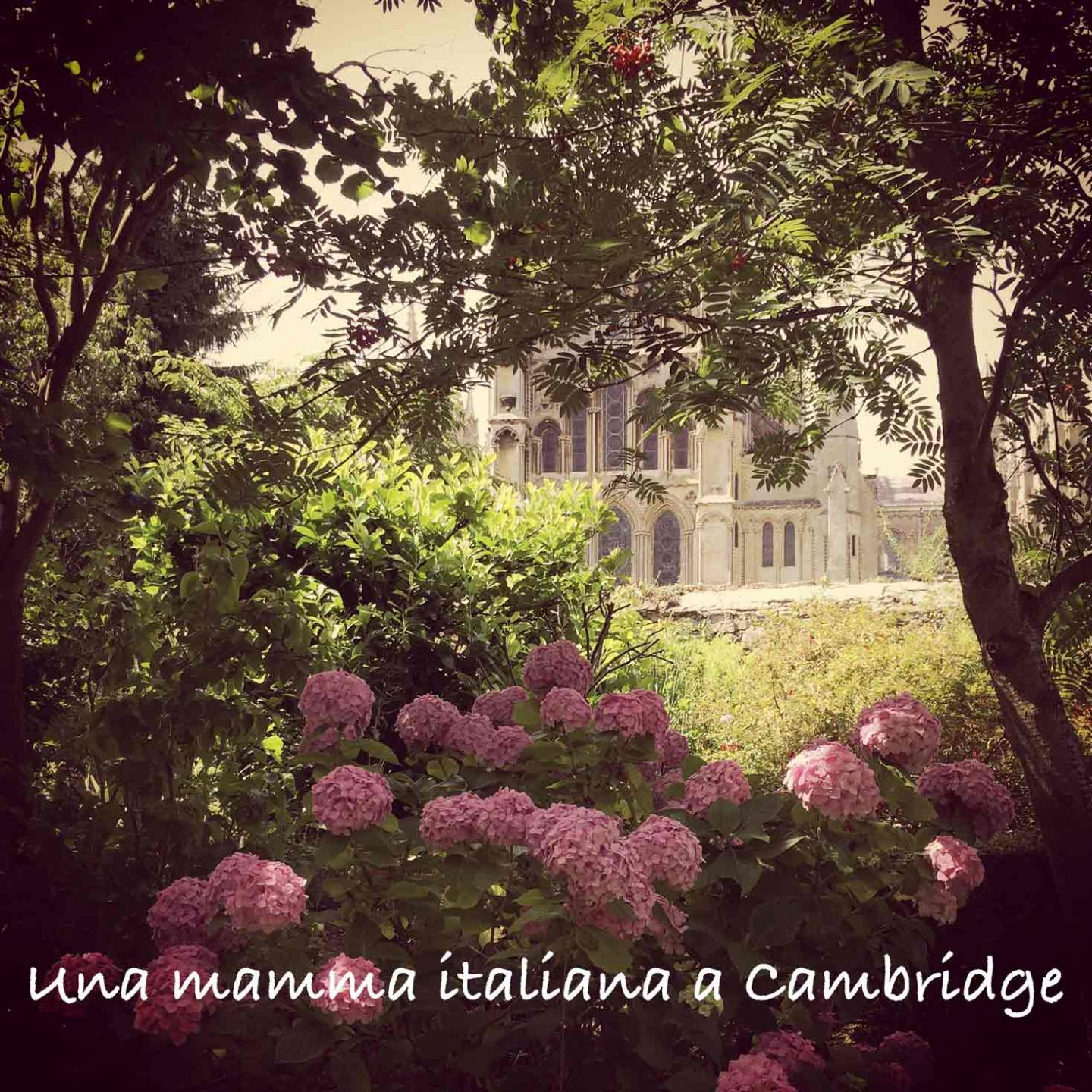 una-mamma-italiana-a-cambridge