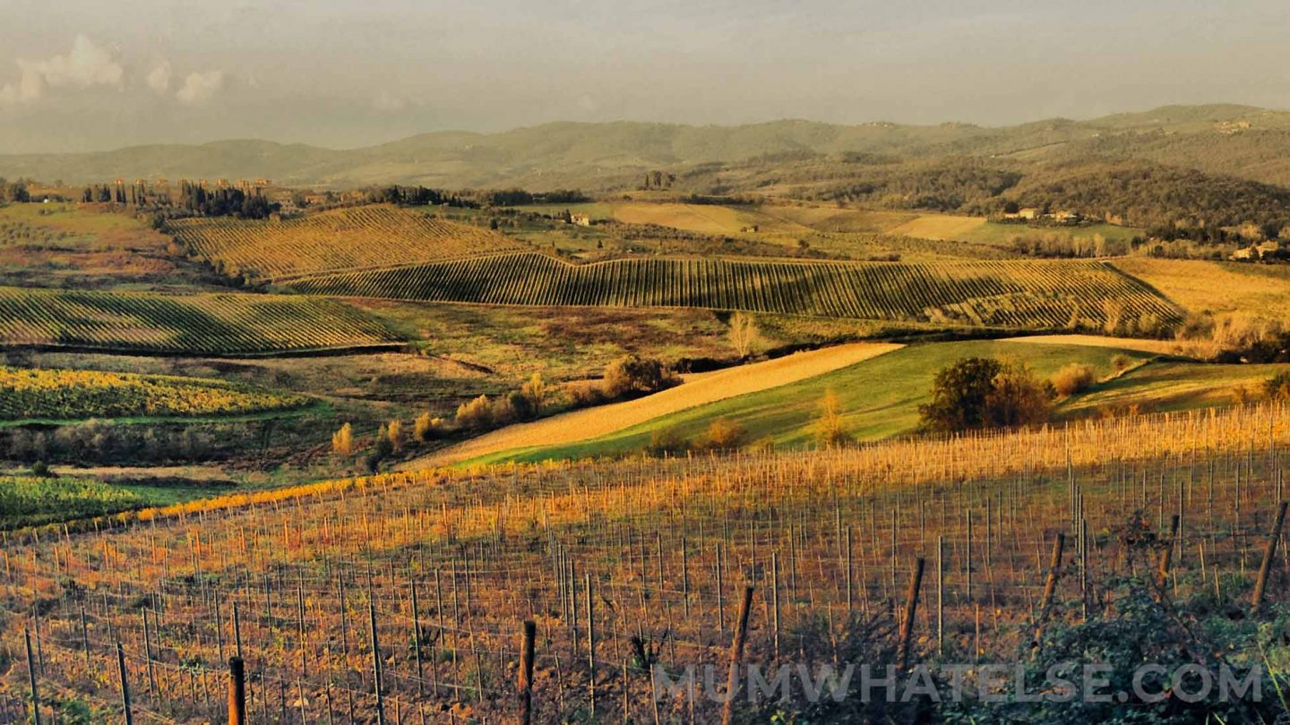 view of the Tuscan hills