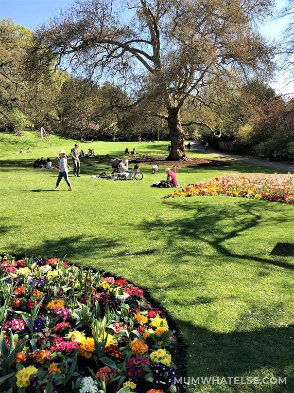 Parco Terrace Field a Richmond: giardino con aiuole in fiore