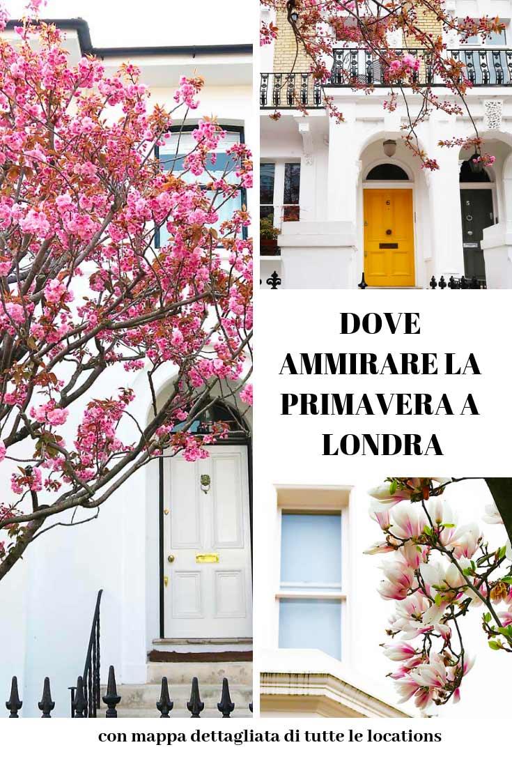ciliegi in fiore e case londinesi con testo