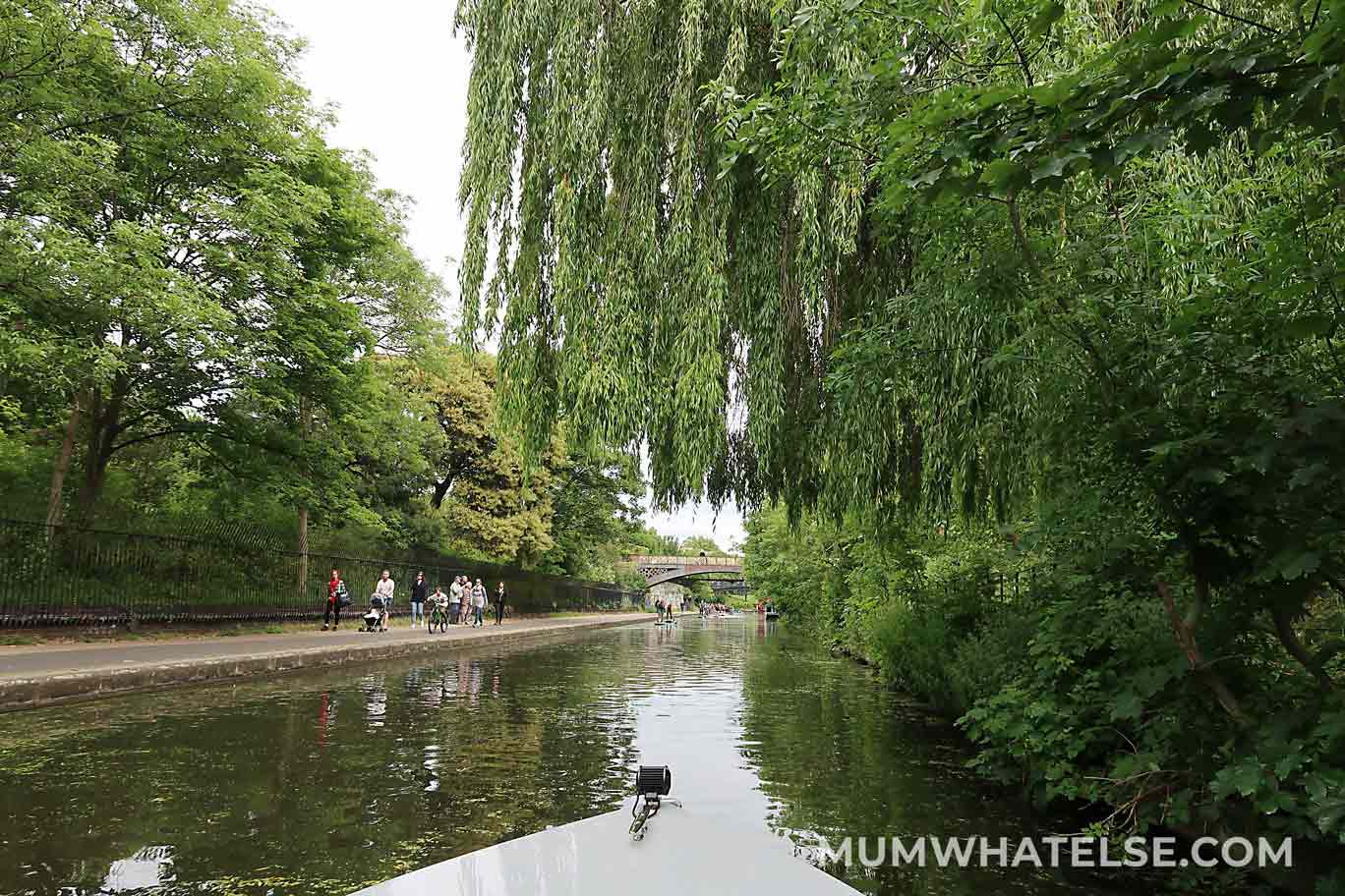 London Canal with Weeping Willow