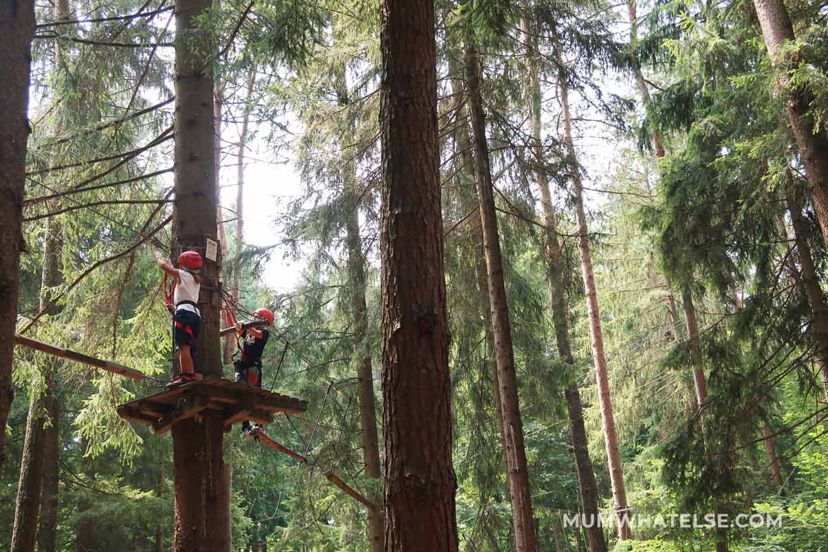 due bimbi su un albero all'interno di un parco avventura