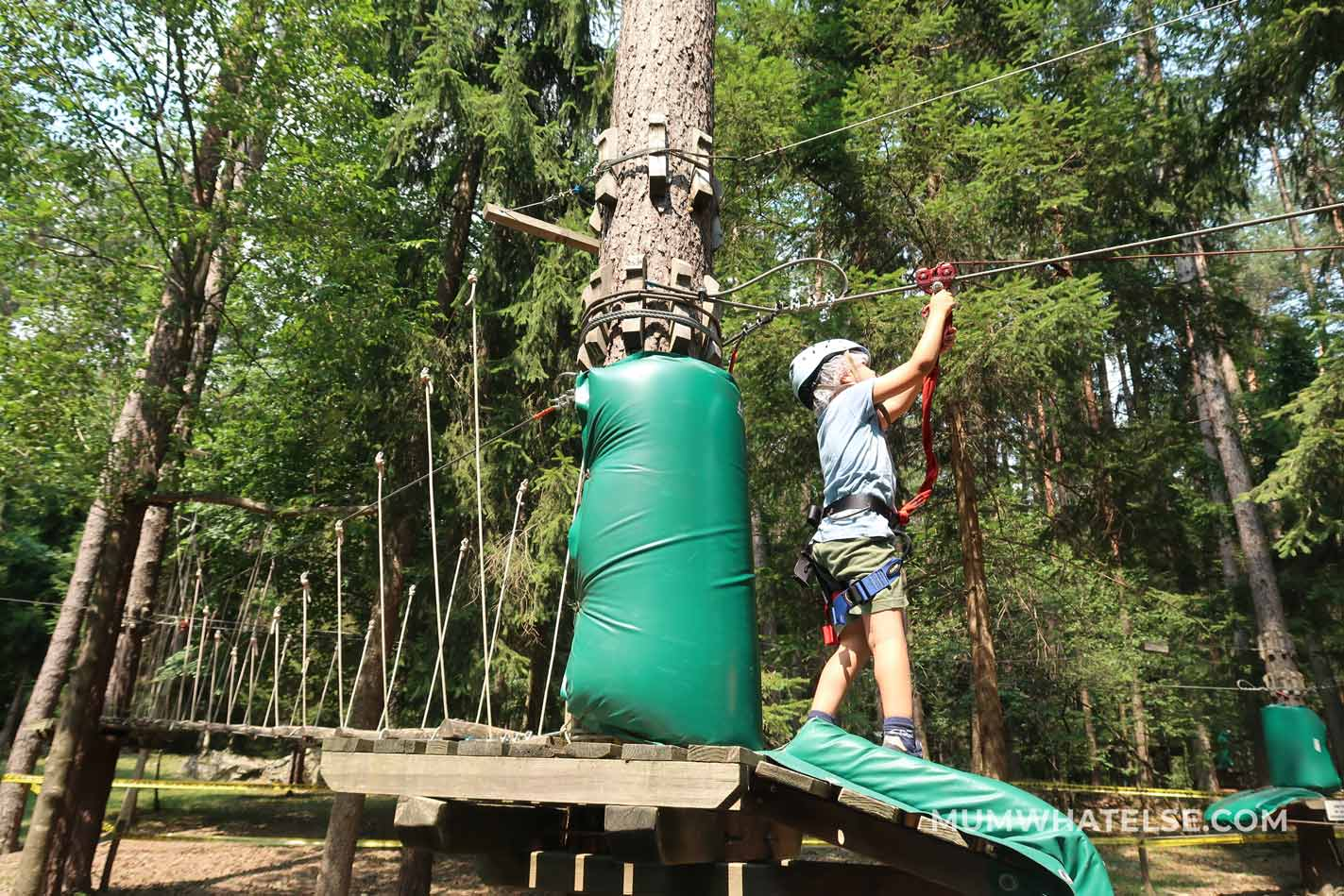 un bimbo con i moschettoni su un albero all'interno di un parco avventura