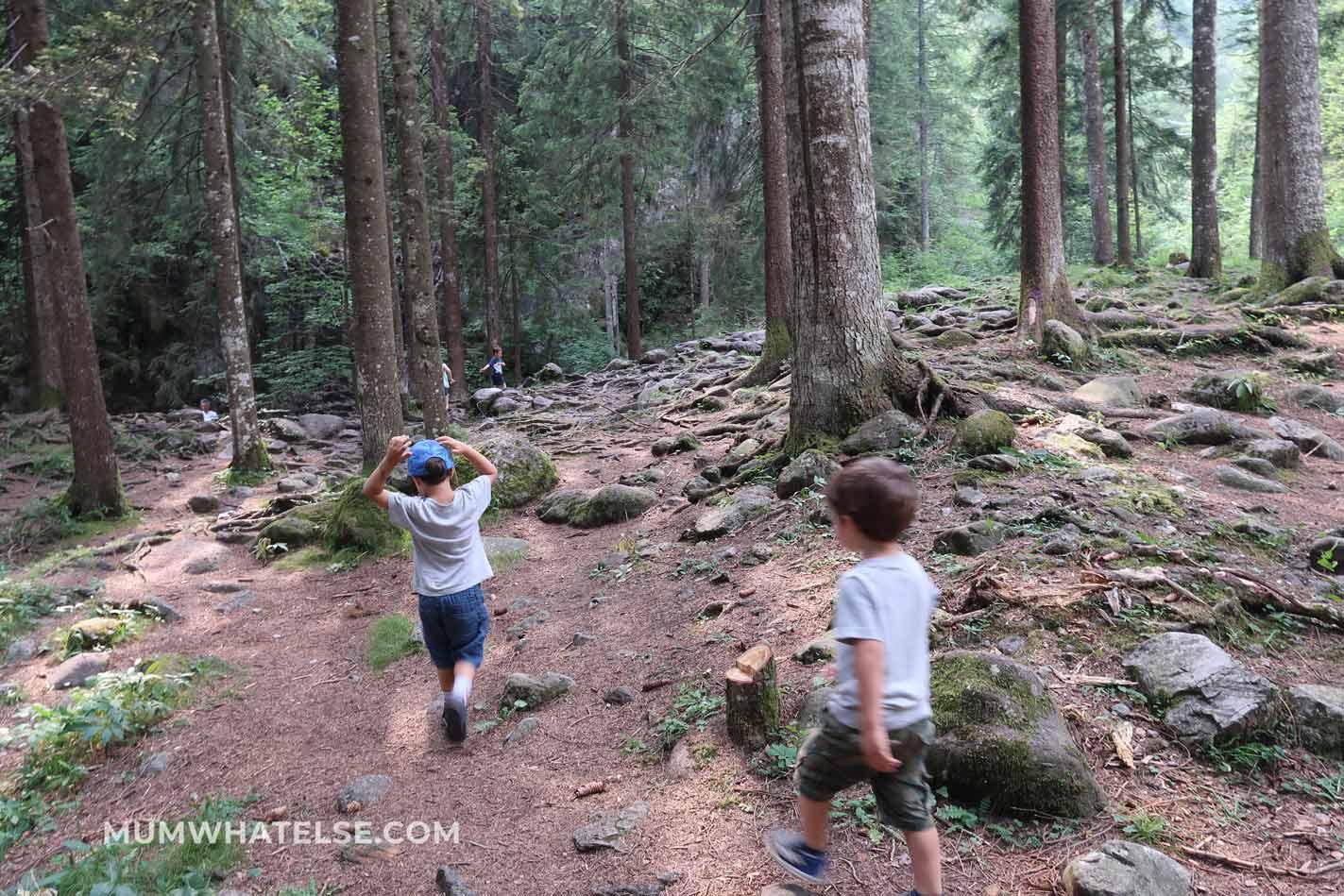 due bambini che camminano in un bosco