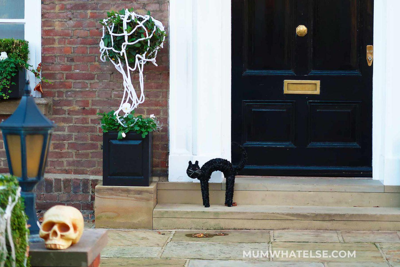 un gatto di fronte a una porta a Londra